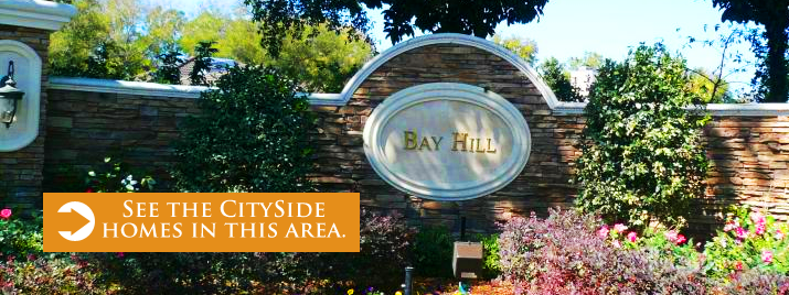 Search for Homes in Dr. Phillips/BayHill!